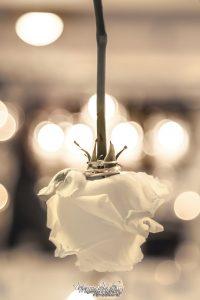 hochzeitsfotografie_hochzeitsfotografin_weddingphotographer_servizio-fotorafico-matrimonio_MareenMalessa_MMF_1468web